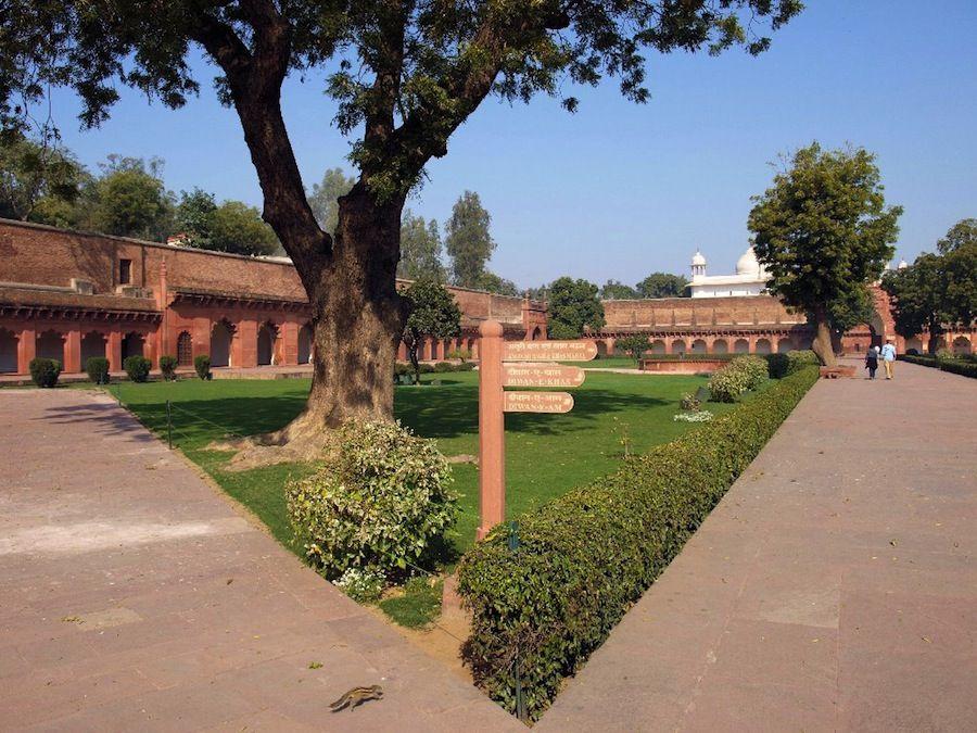 que hacer en Agra, India