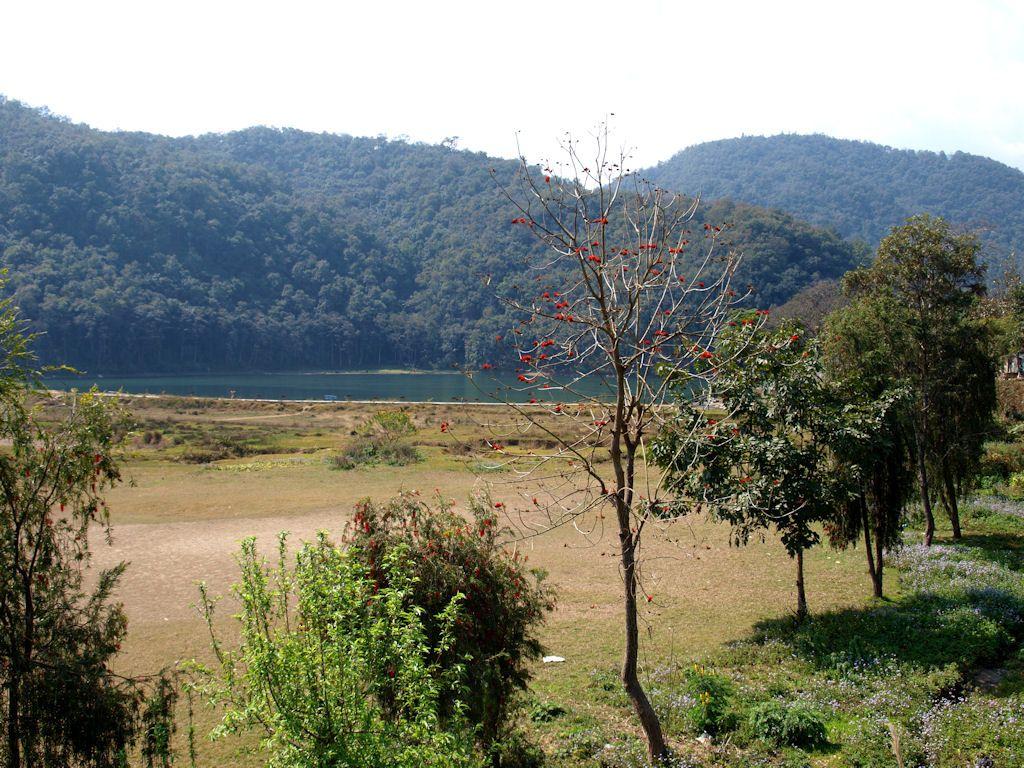 que ver en Pokhara, Nepal, lago, actividades