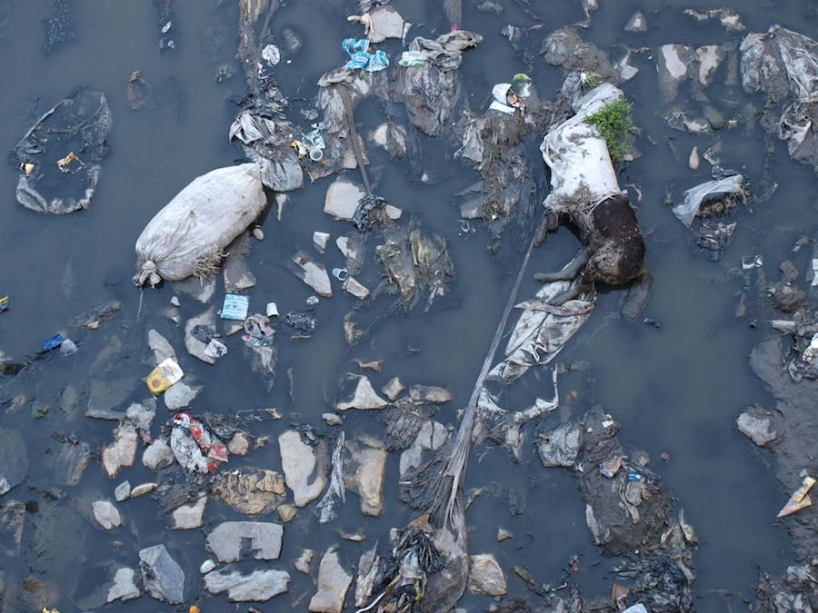 Rio contaminado muertos suciedad