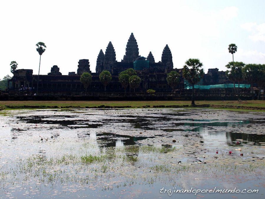 angkor wat, templo, camboya, maravilla, patrimonio