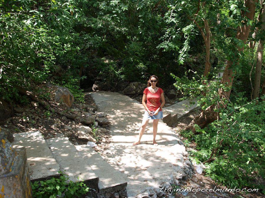 viaje a Camboya, Battambang, excursion, selva