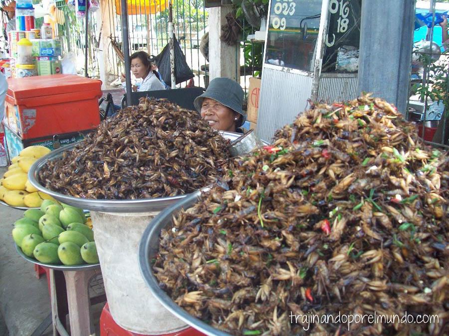 viaje, camboya,comer barato, insectos, bichos