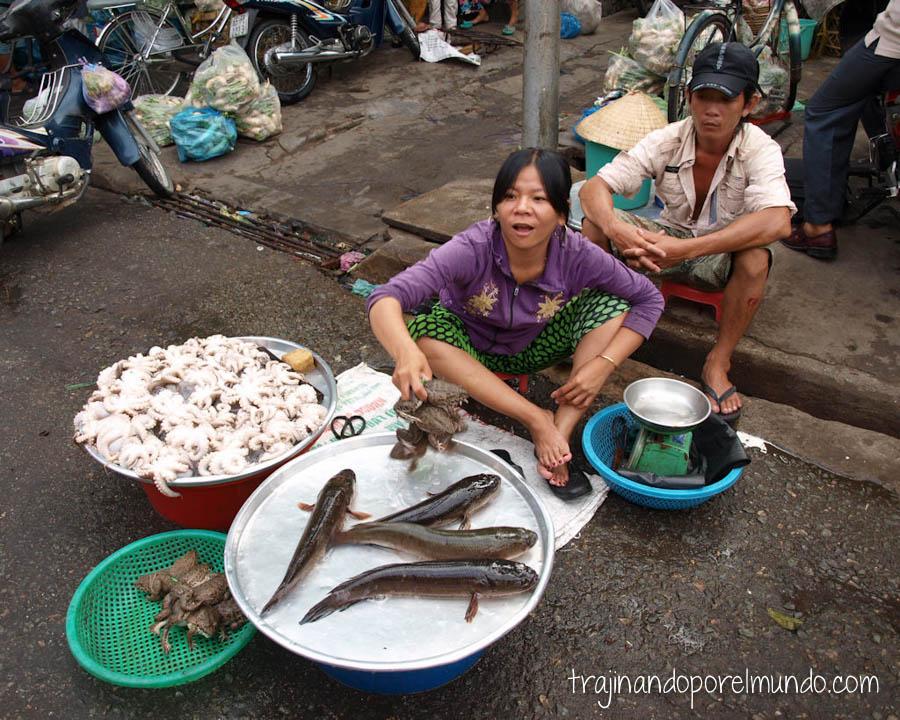 Asia, Vietnam, mercados, animales vivos, pescado fresco, mekong