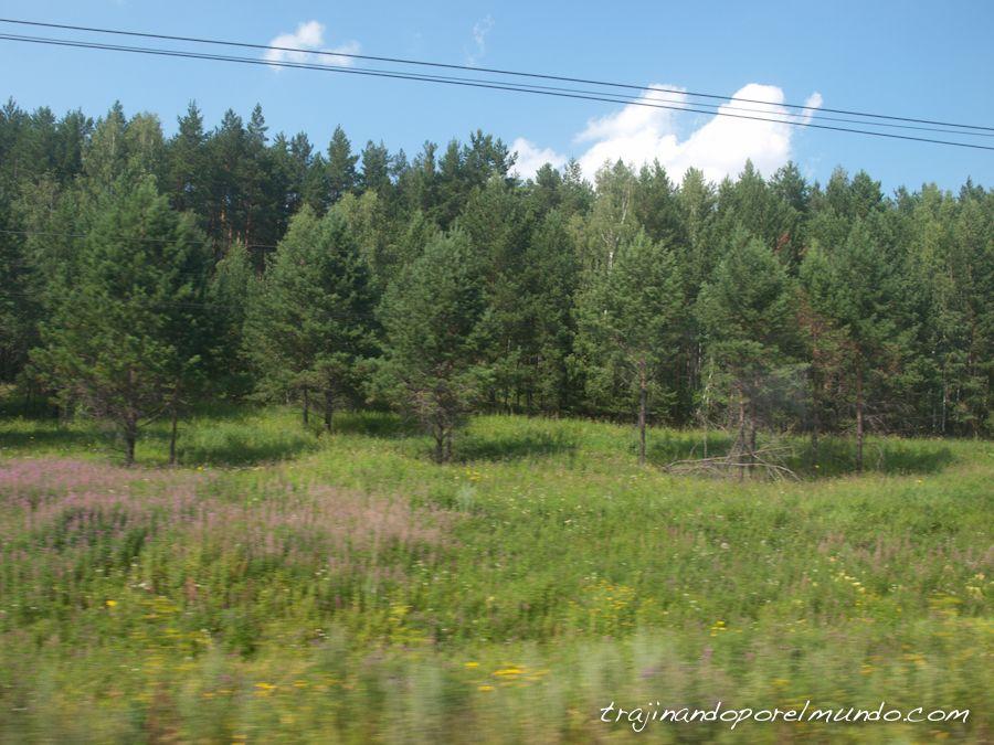 transiberiano, tren, que hacer, entretenimiento