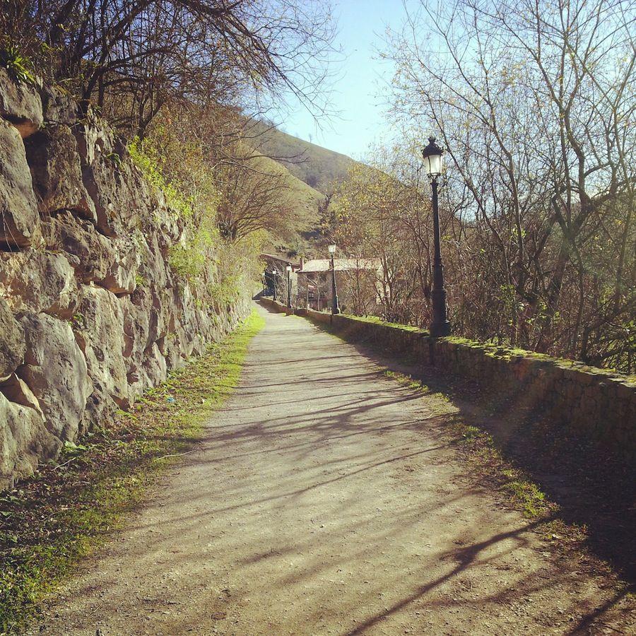 Camino de acceso a Barcena Mayor