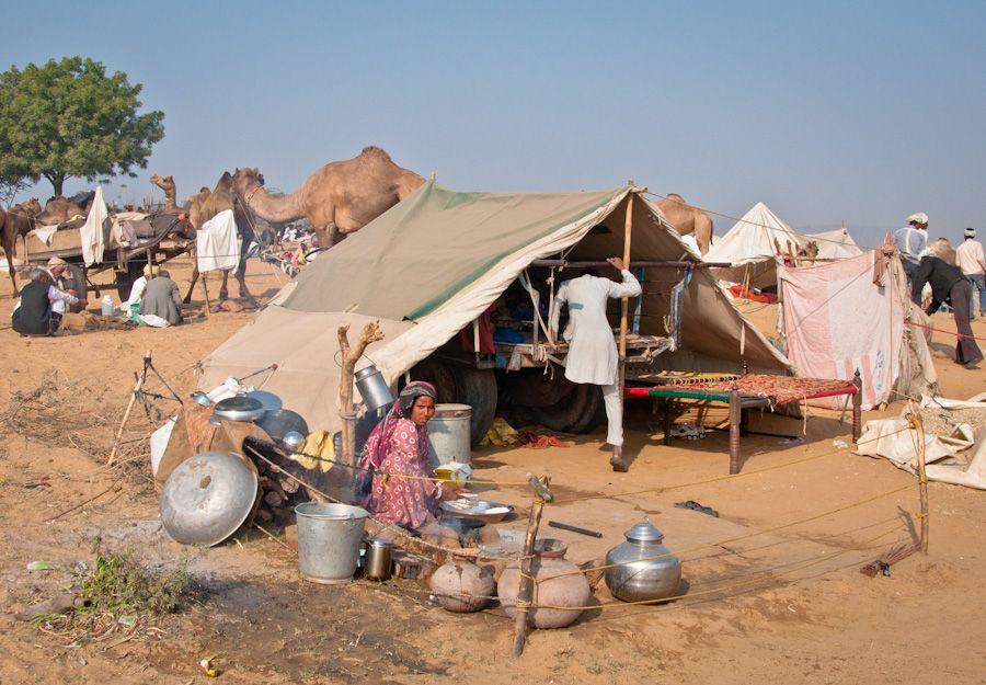 Campamento-Feria-Camello-Pushkar