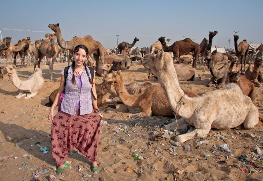 Camel Fair India