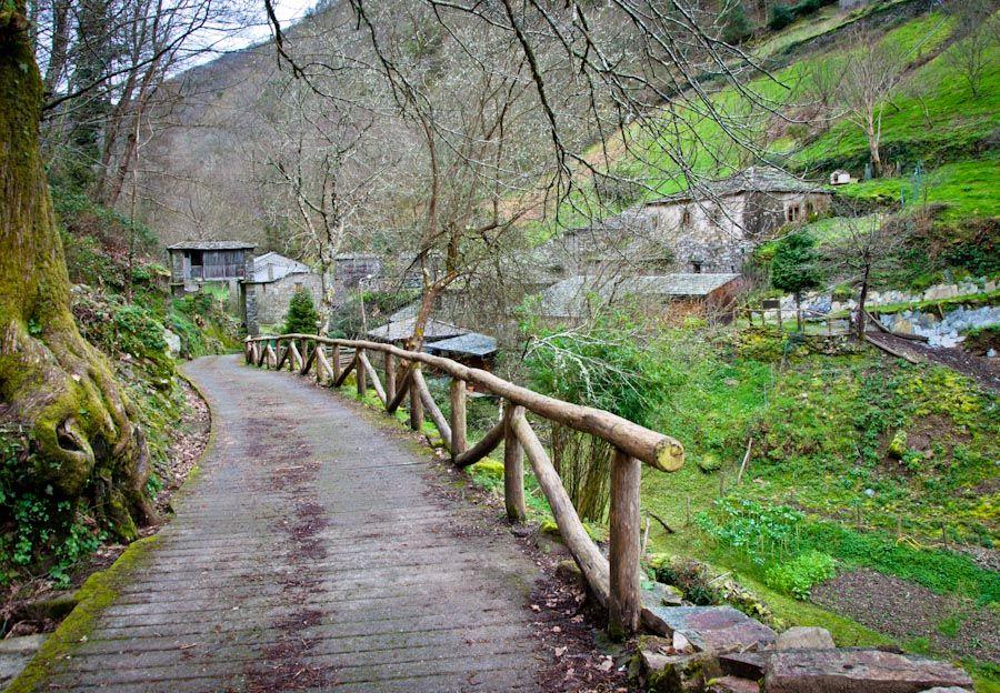 Visita Os Teixois Asturias