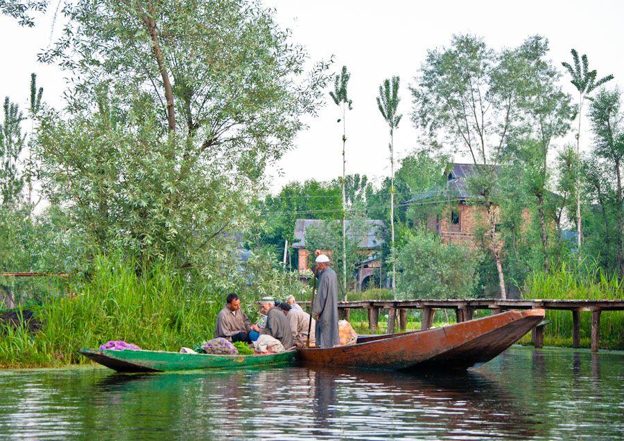 Que hacer en Srinagar Cachemira