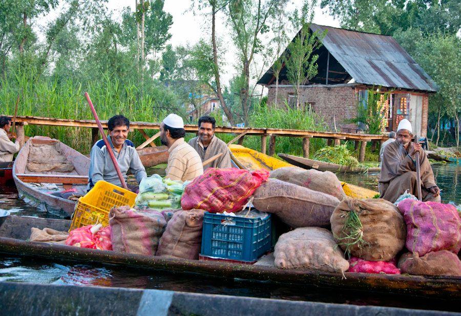 Viaje a Cachemira, India