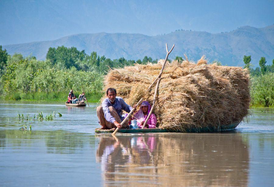 India, Cachemira, barcas, lagos, paseo, paisajes