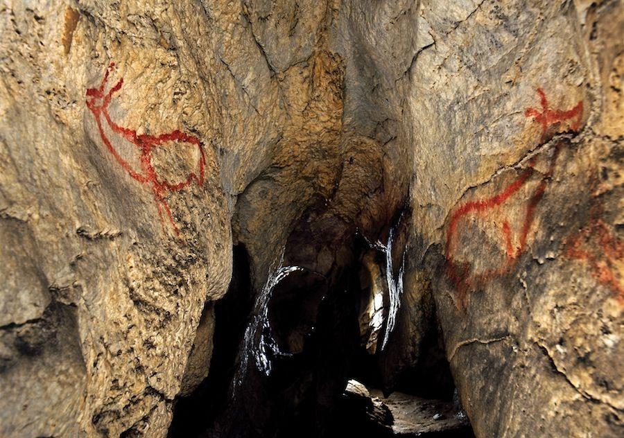Altamira, cuevas, prehistoricas, rupestre, pinturas, ciervos