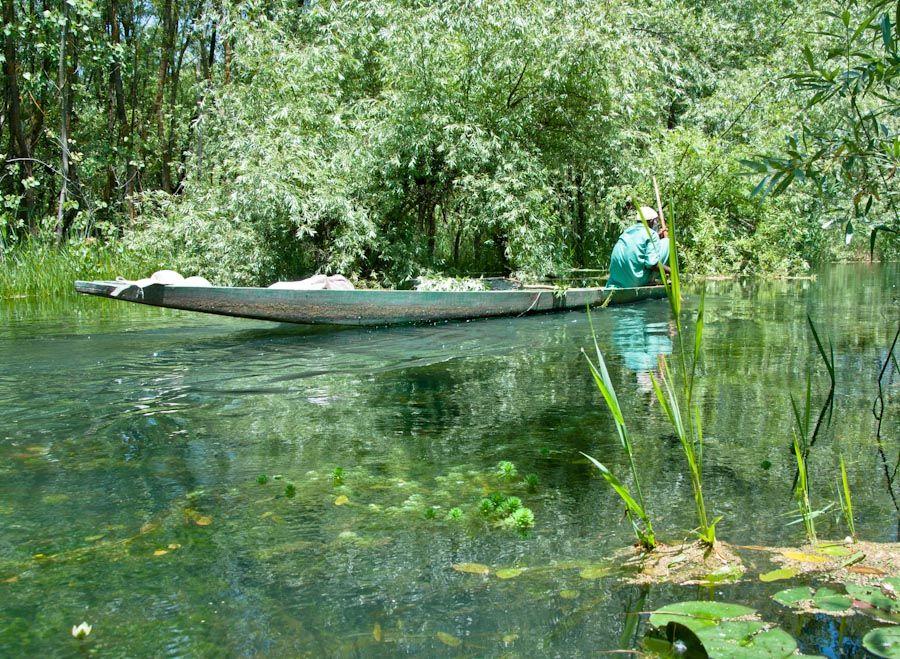 Cachemira, India, canales, vegetacion, paisajes, sikhara