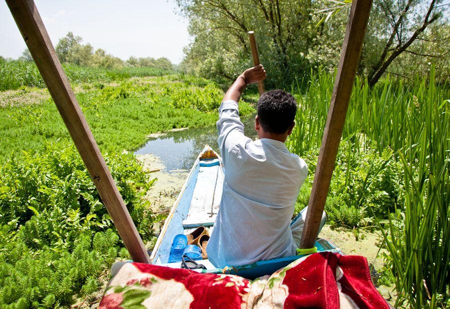 Cachemira, India, lago, canales, sikhara, excursion, paseo, paisajes