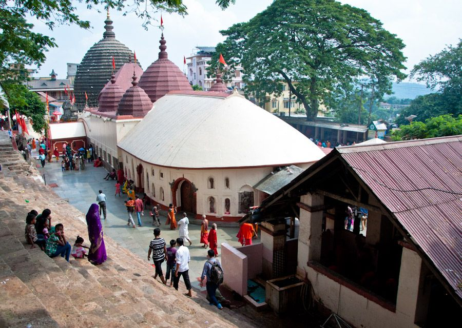 Kamakhya, Guwahati, templo, sacrificios, que ver, animales, Assam