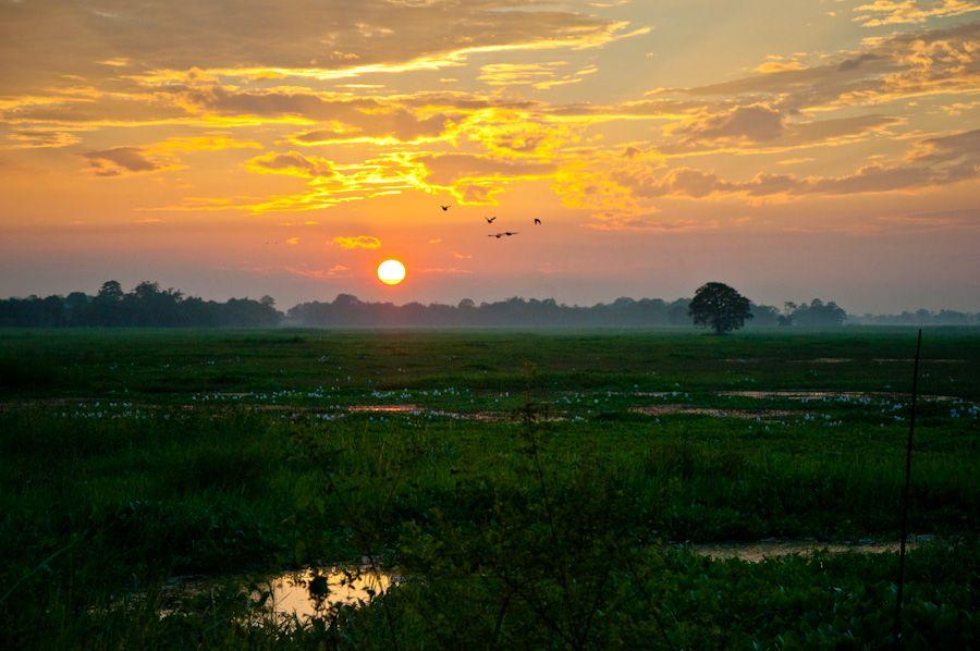 India, paisajes, puesta de sol, Assam, siete hermanas