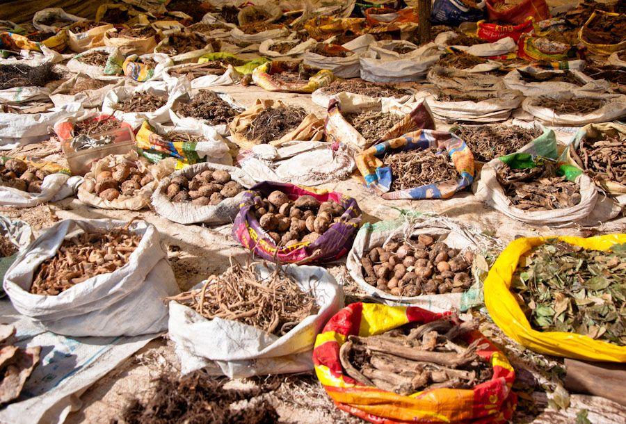 viaje, India, medicina, ayurveda, plantas, natural