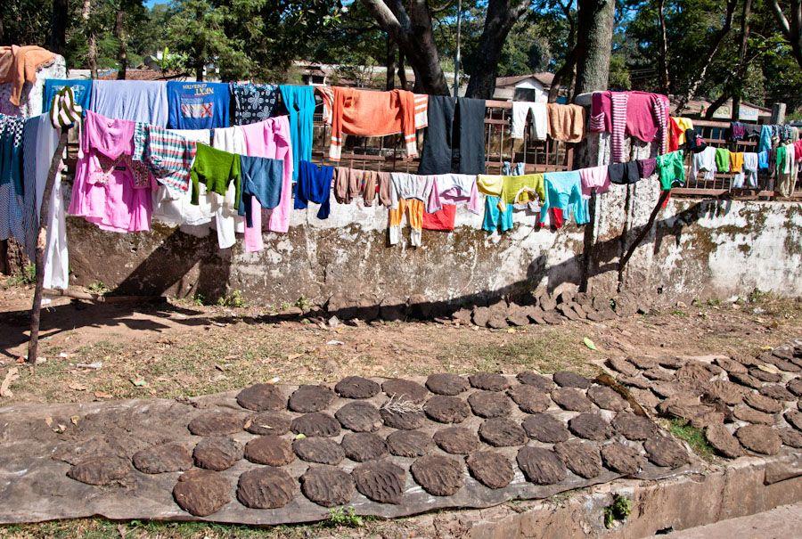 viaje, India, pueblo, rural, estiercol