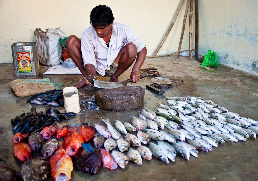 viaje, india, andaman, neil, mercados, que hacer, que ver
