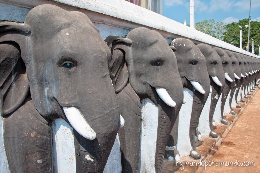 Viajar a Sri Lanka: consejos y recomendaciones