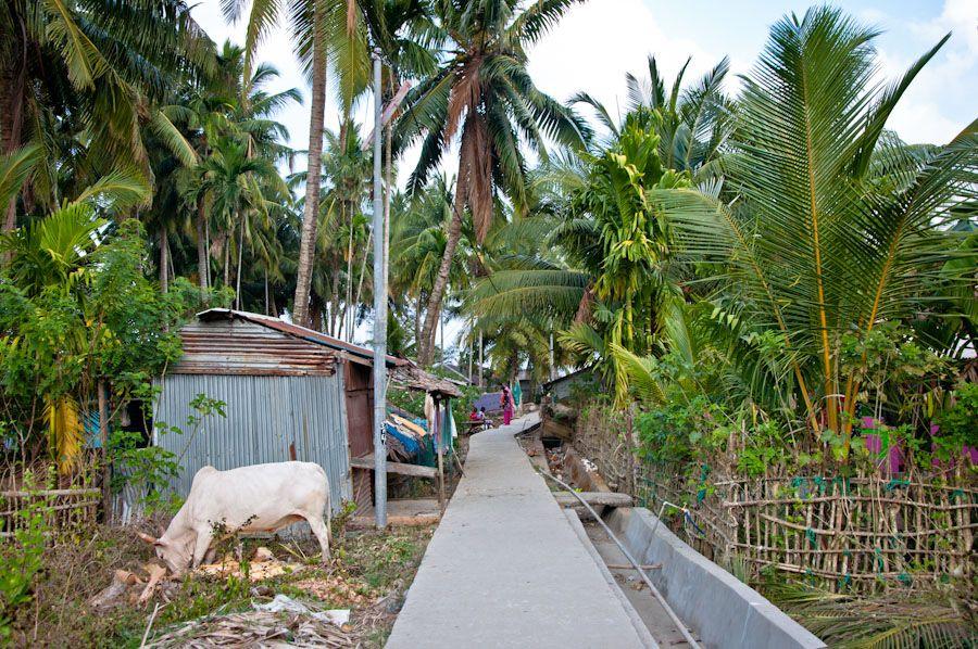 India, viaje, Cuthbert, Andaman, Rangat, tortugas, village,
