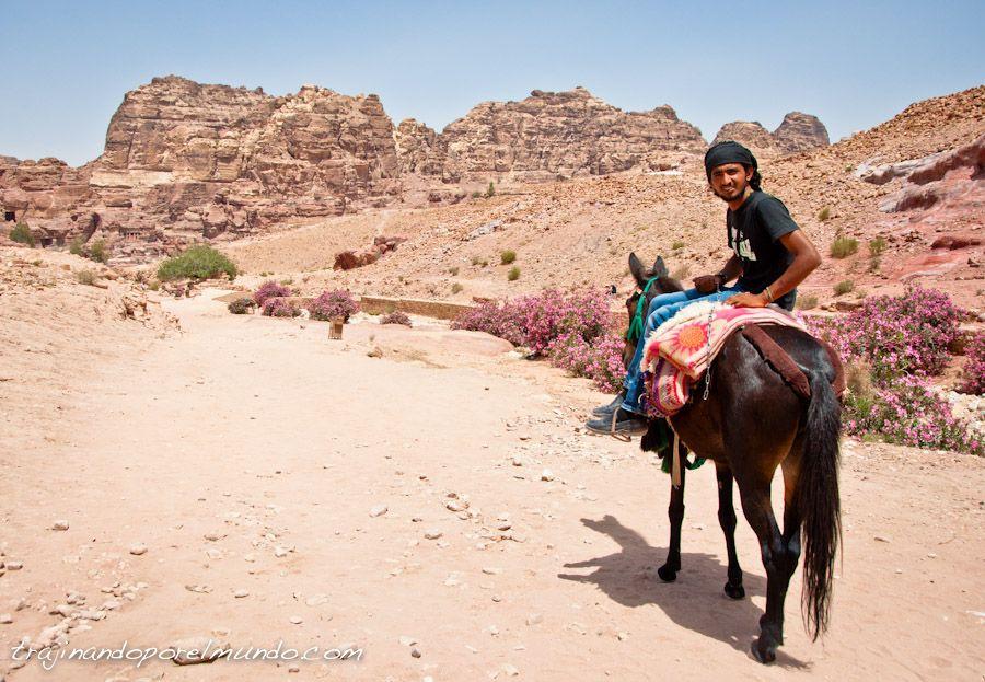 viaje, jordania, turistas, que ver,