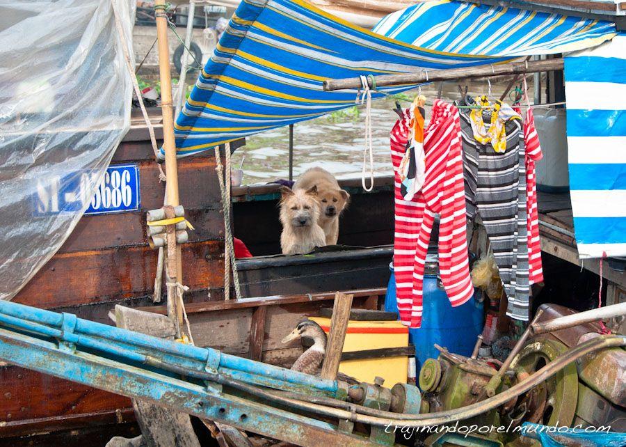 delta-mekong-pueblo-animales-mercado