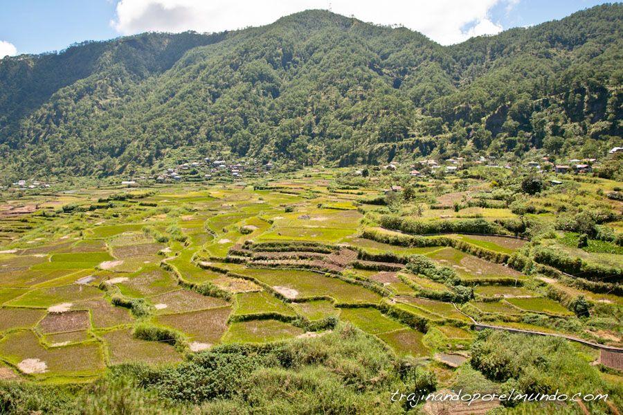 arrozales, cordillera, filipinas, trekking, paseo