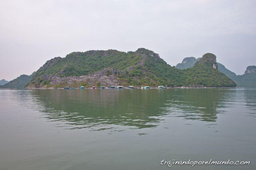 vietnam, que hacer, actividades, excursion, crucero