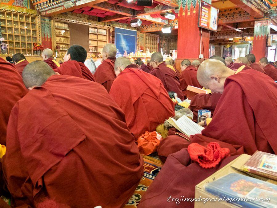tibet, sichuan, monjas, religion