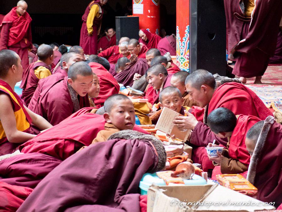 budismo, tibet, china, que ver en sichuan