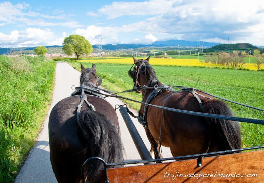 escapada rural, barcelona, manlleu, paseo a caballo,