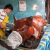 vegetarianos-filipinas