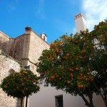 Evento Nomaders Extremadura, segunda parte: Comiendo, bebiendo… y corriendo en Plasencia