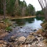 Escapada rural a la Sierra de Albacete (II): El nacimiento del Mundo y la explosión de la vida