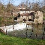 Viaje a Le Tarn, Francia: Lautrec y la paloma asada